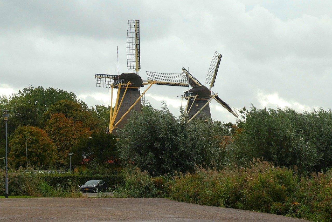 Windmühlen bei Rotterdam