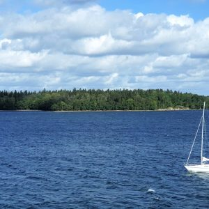 Die Küste Schwedens